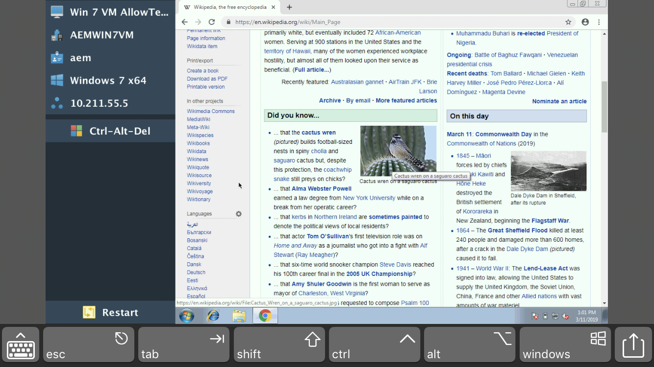 VNC Screenshot